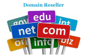Best domain resellers